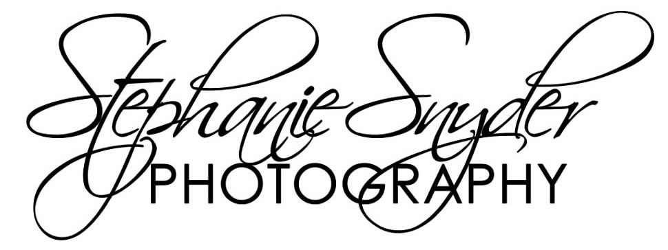 sc wedding photographer and portrait photographer